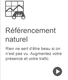 referencement-naturel.fw